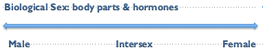 bio sex